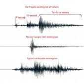 Seismogram graph set