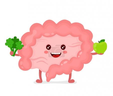 Illustration for Strong healthy happy Intestine character with broccoli and apple. Vector flat cartoon illustration icon design. Isolated on white backgound. Digestive tract, Healthy food nutrition,Intestine  concept - Royalty Free Image