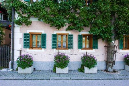House in ivy in Hallstatt