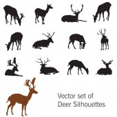 Vector set of deer silhouettes