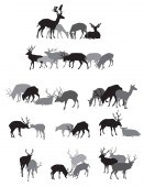Groups of isolated deers silhouettes