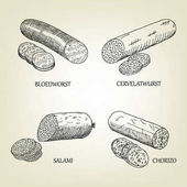 Set of smoked sausages bloedworst cervelatwurst salami and chorizo icons Vector graphic sketch used for advertising meat products butcher shop or recipe book design