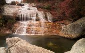 beautiful waterfall in the forest with a swimming hole and colorful fall foliage