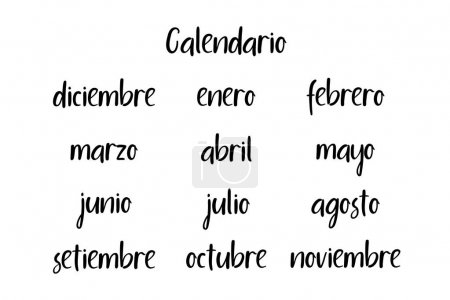 Spanish names of months. Modern calligraphy. Handwritten vector calendar 2018