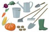Farm Garden inventory set items elements and vegetables harvest yield Beets carrots corn pumpkin potatoes bucket watering can rake shovel chopper boots vector illustration