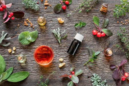Photo pour Bouteilles d'huile essentielle avec encens, sauge sclarée, gaulthère, rue commune et autres herbes sur fond de bois - image libre de droit