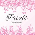 Pink Flying Petals Background. Festive Summer Flor...