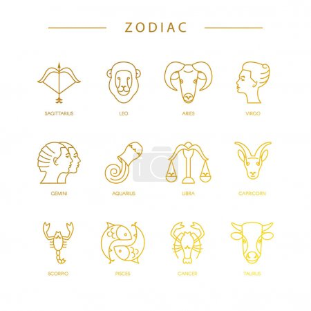 Illustration for Zodiacal symbols and horoscope signs on white background - Royalty Free Image