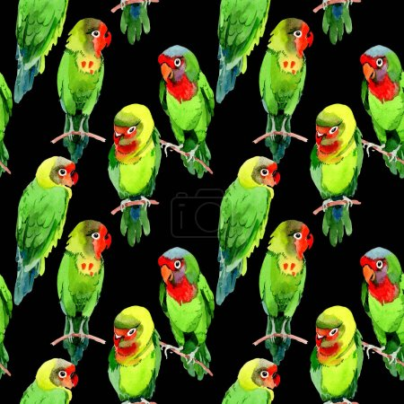 Sky birds small parrots pattern in a wildlife by watercolor style.