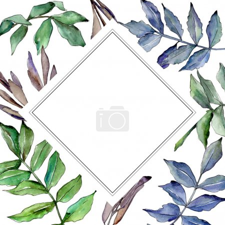 Ash leaves frame in a watercolor style.