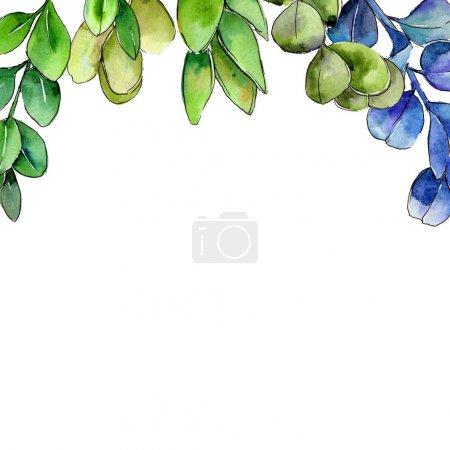 Photo for Green boxwood leaf. Leaf plant botanical garden floral foliage. Aquarelle leaf for background, texture, wrapper pattern, frame or border. - Royalty Free Image