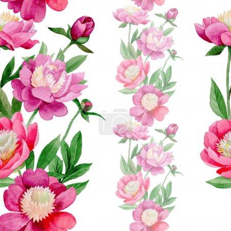 Pink peony. Floral botanical flower. Wild summer leaf wildflower pattern.