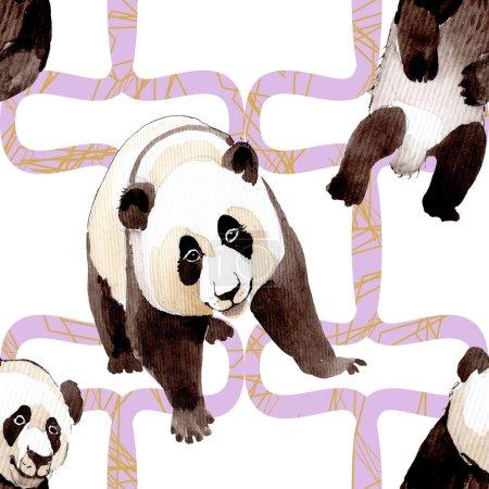 Panda exótica animal salvaje aislado. Conjunto de ilustración de fondo acuarela. Patrón de fondo sin costuras .