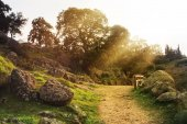 Beautiful rural country path between the big stones and trees and a dramatic evening sunlight, an autumn landscape with a falling ray of sun, Toledo, Spain.