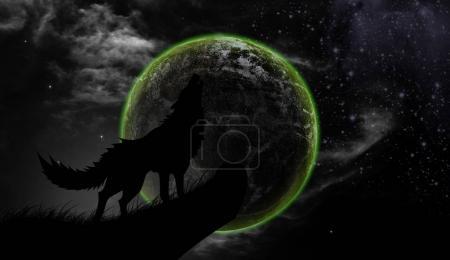 Photo pour Les loups hurlent la pleine lune - image libre de droit