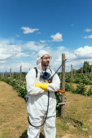 Industrial agriculture theme. Man spraying toxic pesticides or insecticides on fruit growing plantation. Natural hard light on sunny day. Blue sky with clouds in background