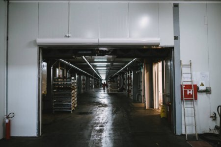 Industrial machinery interiors. Huge production hall of factory for freezing, selecting and keeping of deep frozen food