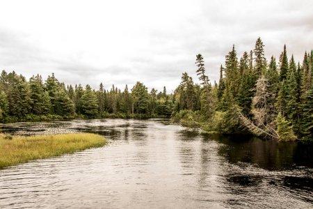 Photo pour Canada Ontario Lac de deux rivières - paysage naturel sauvage près de l'eau dans le parc national Algonquin - image libre de droit