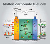 Molten carbonate fuel cell process Vector art Illustration design