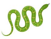 Green snake vector illustration