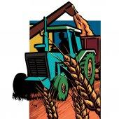 Vintage tractor harvesting