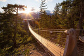 """Постер, картина, фотообои """"Висячий мост на вершине горы в Сквомише, к северу от Ванкувера, Британская Колумбия, Канада."""""""