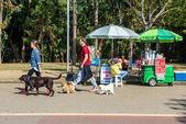 people resting in Ibirapuera park