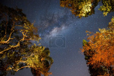 beautiful sky with stars