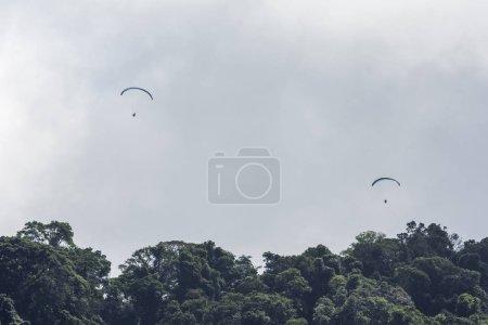 Photo pour Pilotes de parapente survolant Floresta da Tijuca (forêt de Tijuca) à Rio de Janeiro, Brésil - image libre de droit