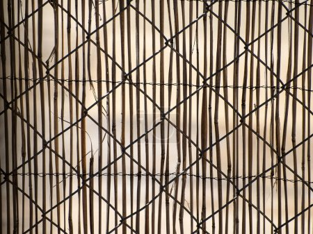 Photo pour Texture d'une clôture métallique avec des cannes de bambou sur une maison - image libre de droit
