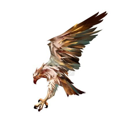 drawn isolated attacking osprey