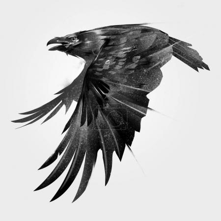 Photo for Art flying bird crow on the side - Royalty Free Image