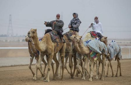 men riding camels in sand storm