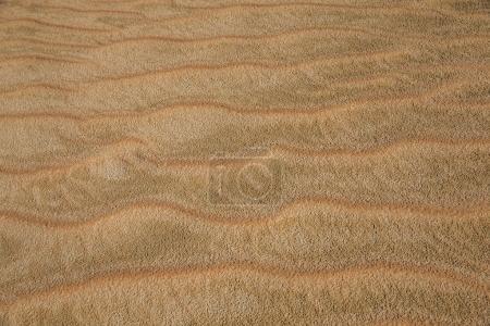 sand dunes in Liwa Desert