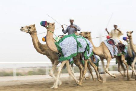 men training camels
