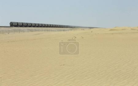 former dans les dunes du désert de Liwa