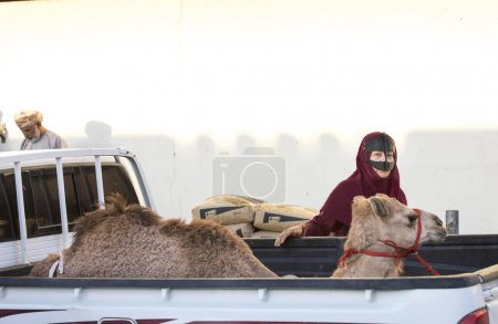 Sinaw, Oman, November 30th, 2017: bedhouin woman with her camel at market