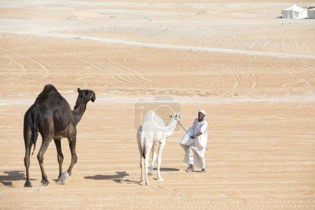 Photo pour Madinat Zayed, Émirats arabes unis, 15 décembre 2017 : homme arabe avec chameaux dans un désert - image libre de droit