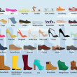 Set with different types of women's shoes / woman'...