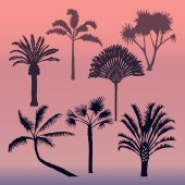Vector set of isolated silhouettes of palms Dark silhouettes of palm trees at sunset background