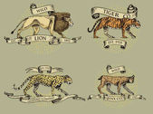 lion tiger lynx and leopard logos emblems or badges with wild animals and banners or ribbons in vintage retro old style hand drawn engraving sketch