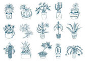 Succulents set cactus peyote echeveria haworthia aloe vera Green decorative plants in the teacup and pots Floral botanical leaves engraved hand drawn vector collection bushes and branches
