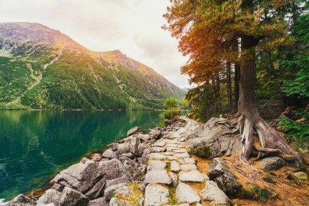Photo pour Paysage de montagne avec sentier de randonnée et vue sur le magnifique lever du soleil du lac Morskie Oko (Oeil de Mer). Vue imprenable sur le parc national des Hautes Tatras, Pologne, Europe. Concept beauté de la nature . - image libre de droit