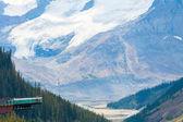 Columbia icefield glacier skywalk view athabasca canada