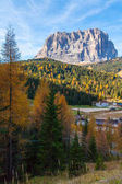 Italian Dolomites Sassolungo mountain