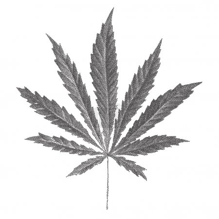 Illustration of dotted Cannabis sativa leaf in old...