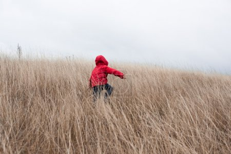 Photo for Cute little boy in red jacket with hood walking in tall dry grass at cloudy autumn day - Royalty Free Image