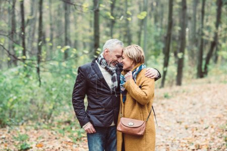 Photo for Beautiful mature couple walking in autumn park - Royalty Free Image