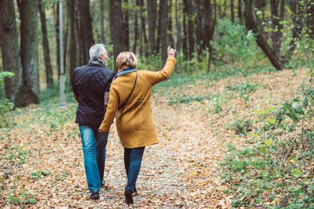 Photo for Back view of beautiful mature couple walking in autumn park - Royalty Free Image