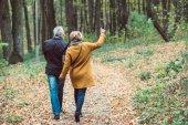 """Постер, картина, фотообои """"Пожилая пара, ходить в Осенний парк"""""""